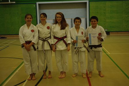 New Junior and Adult Brown/White to Brown/Black Belts