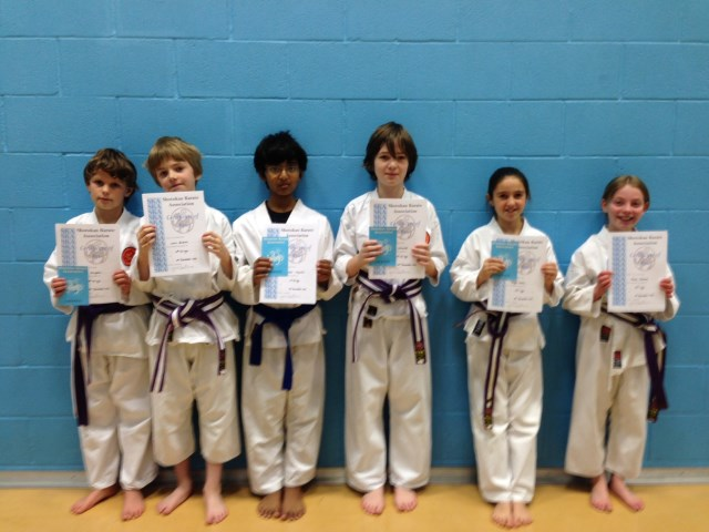New Junior Blue/White to Brown Belts