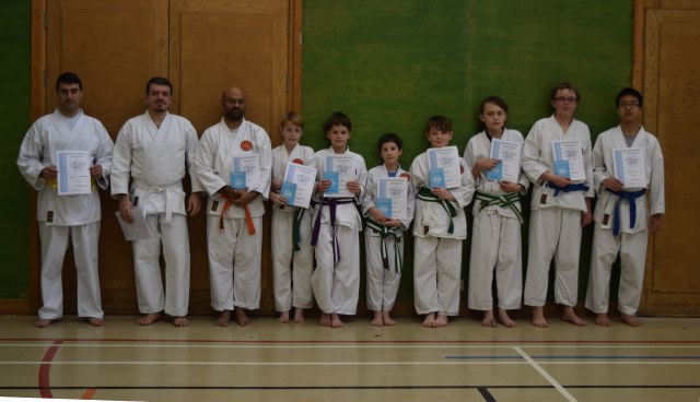 New Adult and Junior Orange to Purple Belts